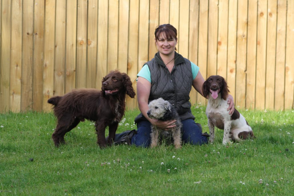 Helen, Daisy, Bella and Arch at Proper Dog Day Care